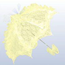csipke ernyő krém (ASP)