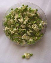szatén rózsafej levélkével, krém (kb. 100 db)